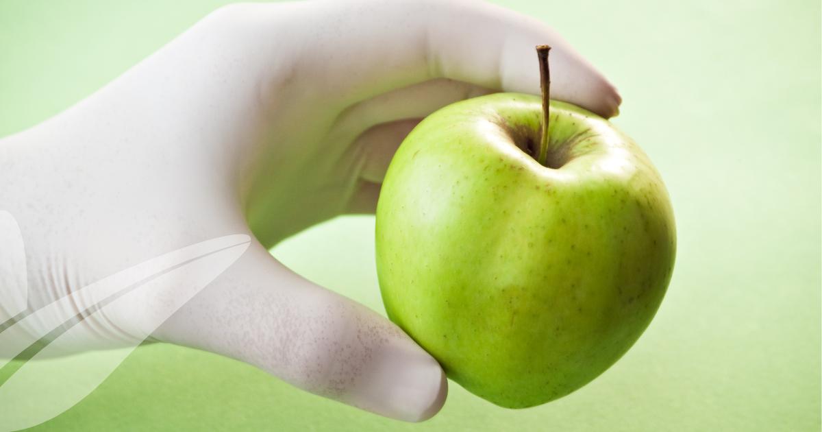 Higiene e Segurança Alimentar: Norma ISO 22000:2018 – Alterações